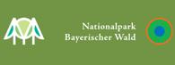Nationalpark-bayrischer-Wald